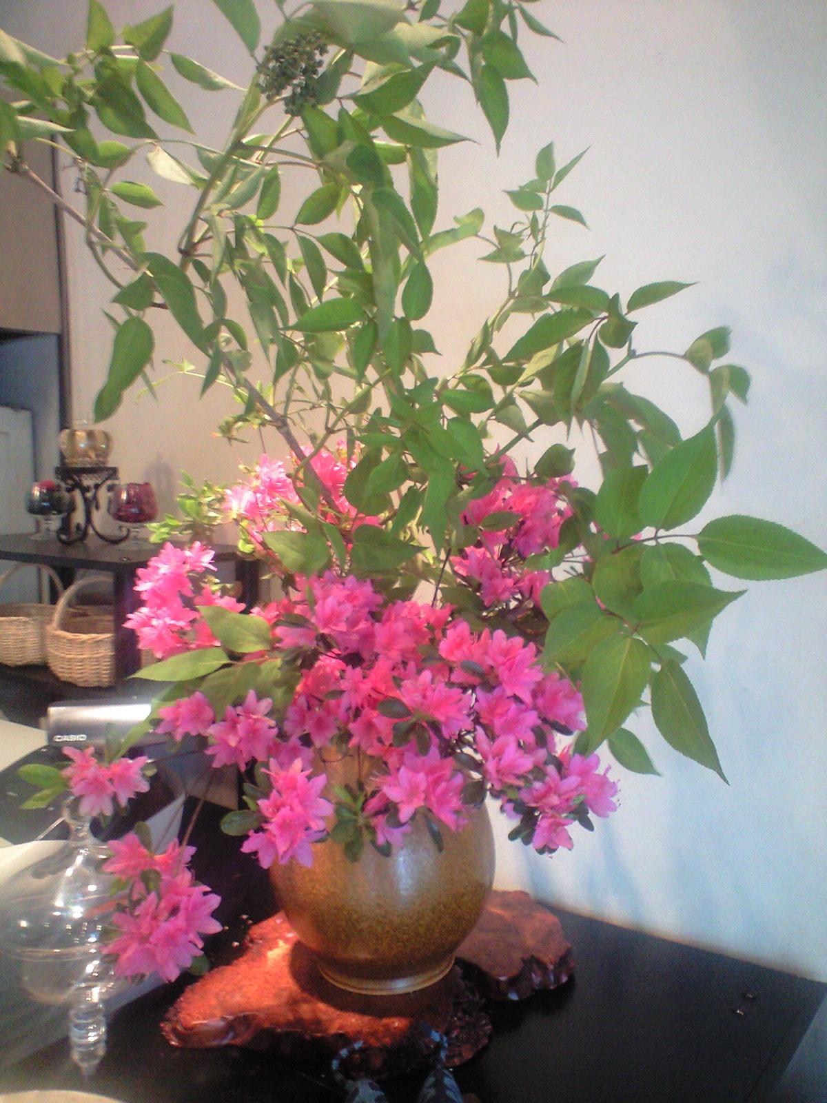 http://www.kyoto-cake.com/2010/05/08/CA3A0165001.JPG